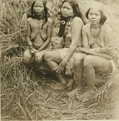 """Image from page 224 of """"The pagan tribes of Borneo; a description of their physical, moral and intellectual condition, with some discussion of their ethnic relations"""" (1912)"""