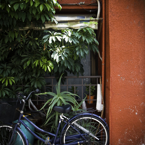 Red Wall with Aloe and Bicycle, Kita Senju, Tokyo