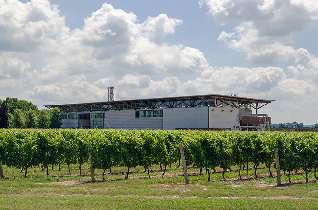 20140726-Niagara-on-the-Lake-Wine-Country-2434