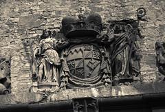 Greiffenclau-Wappen