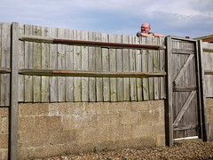 Fence man
