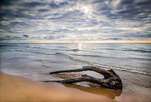 sun tree beach water wisconsin clouds sunrise sand rocks lakemichigan harringtonstatepark