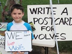 Kids Love Wolves