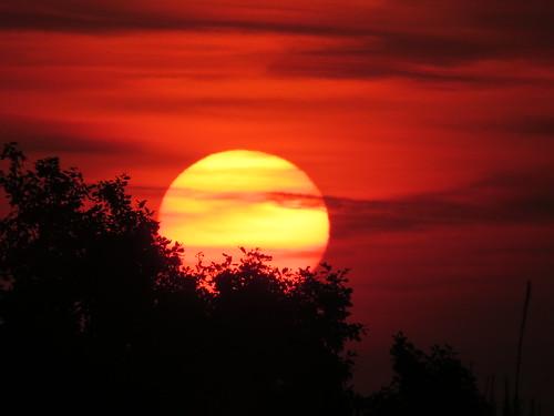 sunset sun streets rain sunrise mond heaven himmel wolken september neighbours sonne nachbarn homesweethome regen spaziergänge streetlive baumpilze
