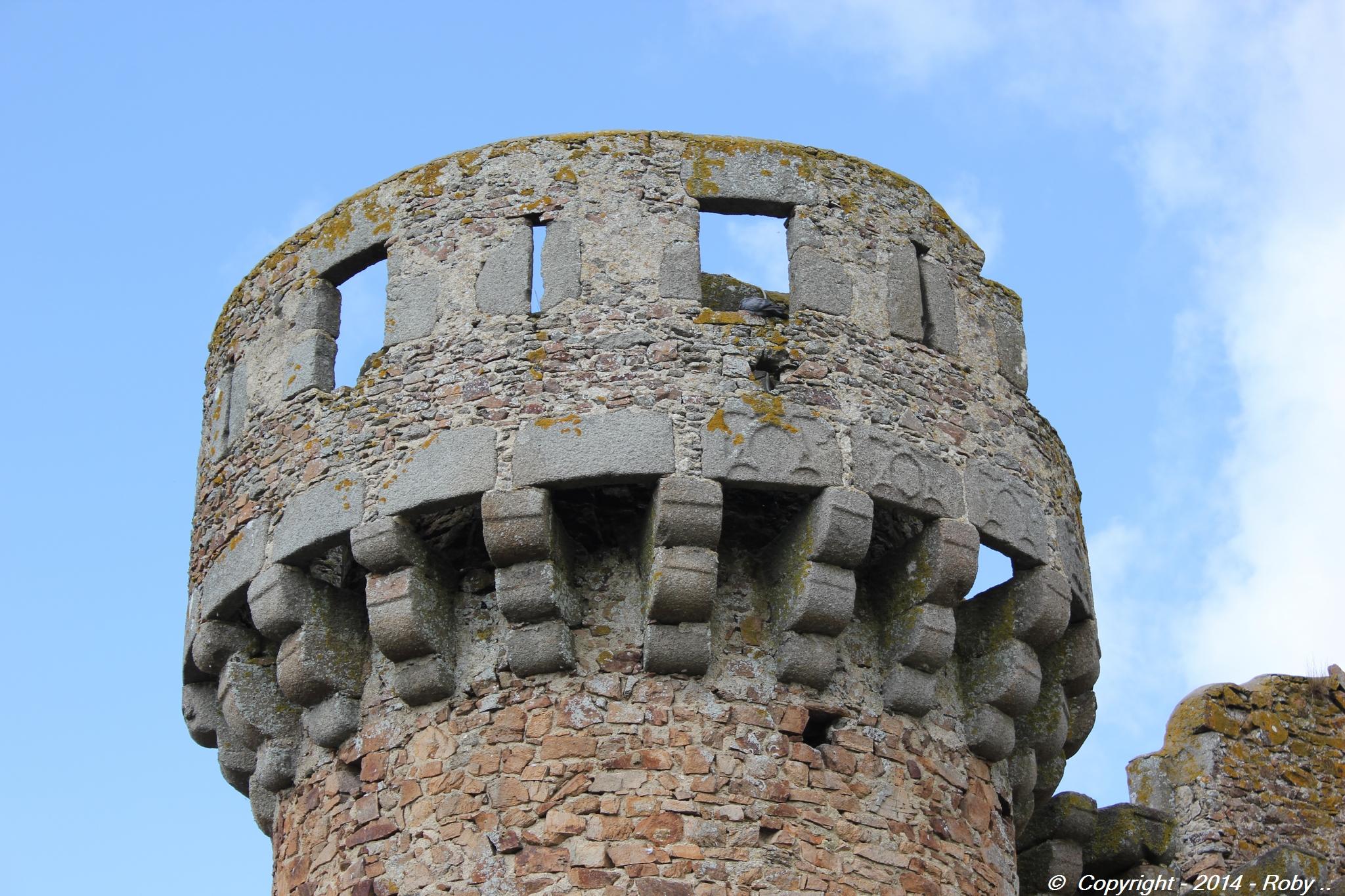 chateau de Sanzay (35)