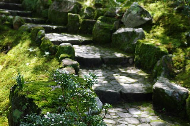 吉城園-苔の庭5