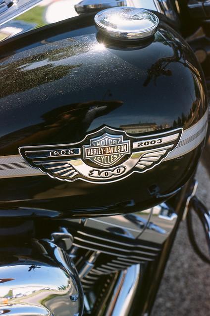 Harley Century