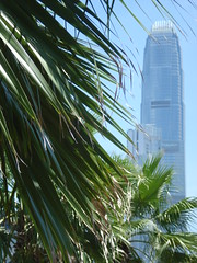 Sheung Wan View