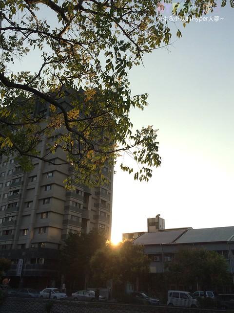 台中秋天最美麗的大水溝 – 華美西街【欒樹】一起變裝囉~ @強生與小吠的Hyper人蔘~