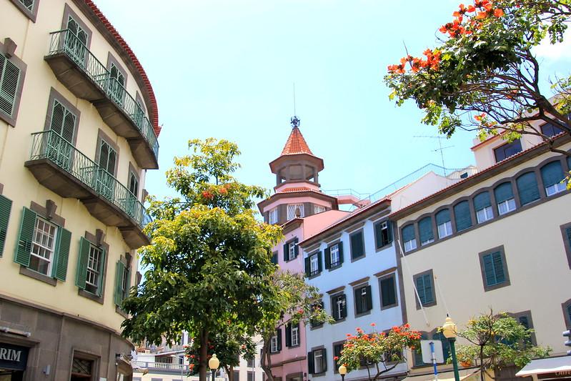 Madeira, Funchal 2014 + ostokset 008