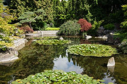Kelowna Japanese Garden
