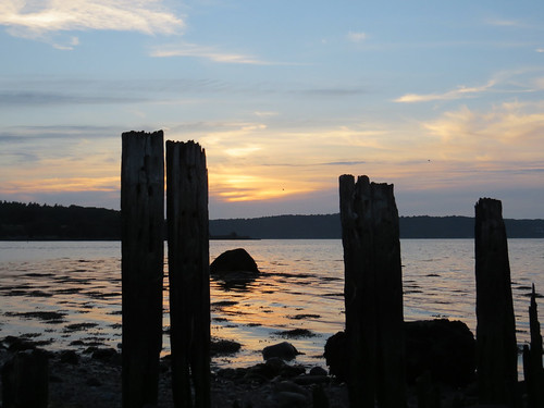 50 Sunset and skeleton groynes