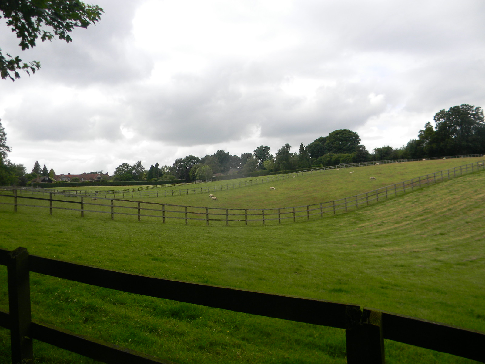 View with fences Wendover to Great Missenden via Swan Bottom