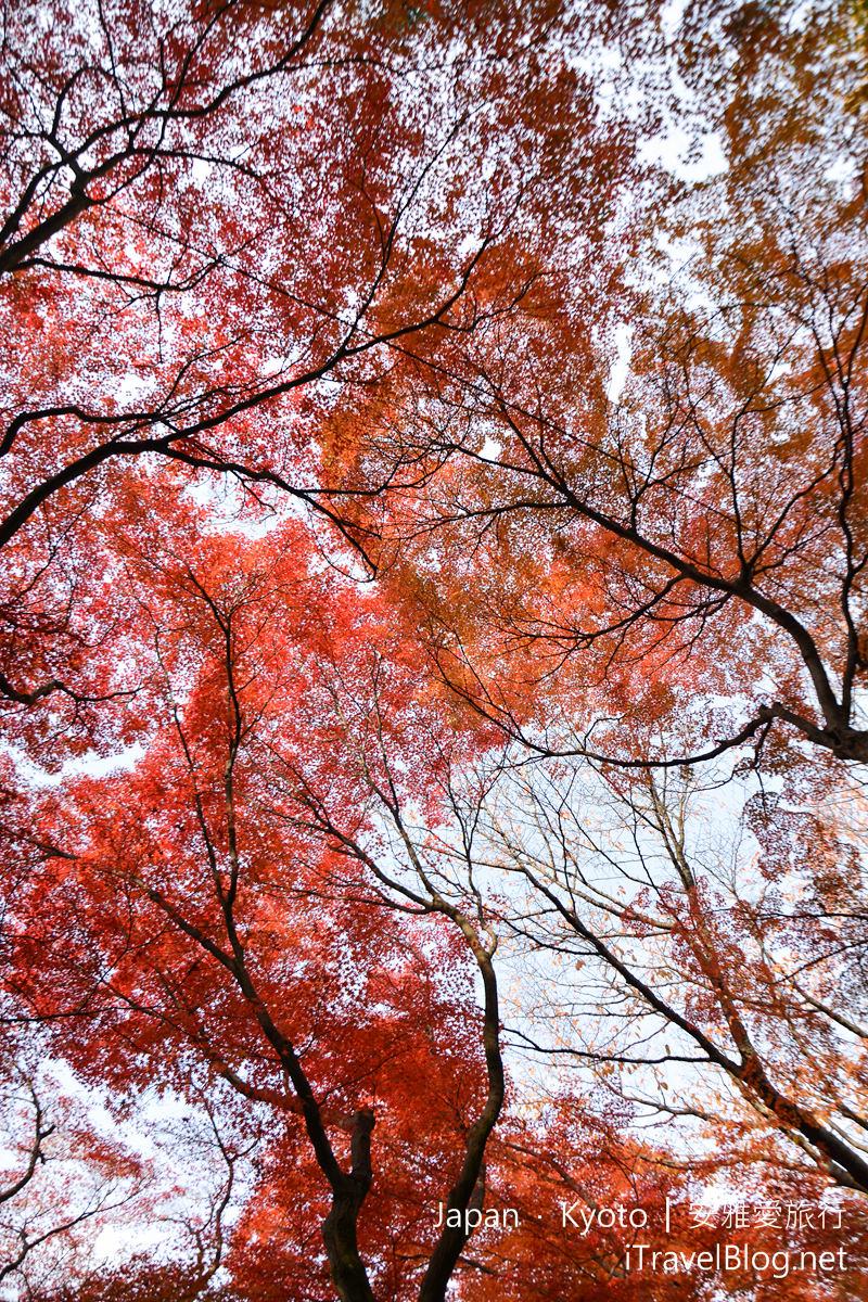 京都 东福寺11