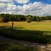 Annuellement, il se tient deux courses dans Lidingö, l'une de 15 km et l'autre de 30 km.