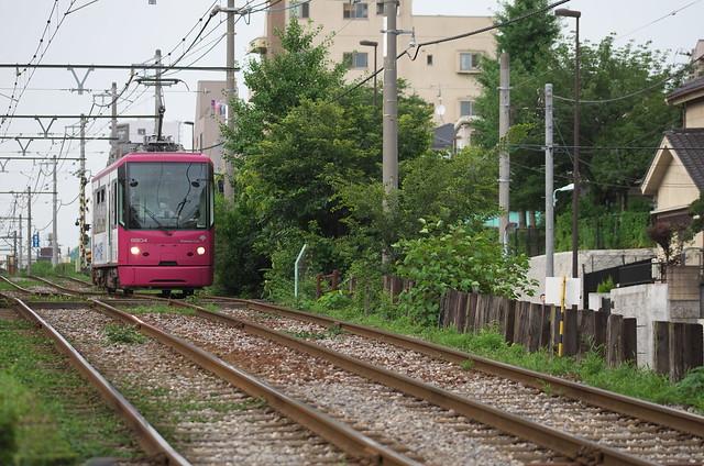 Tokyo Train Story 都電荒川線 2014年7月6日