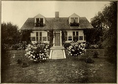 """Image from page 485 of """"American homes and gardens"""" (1905)"""