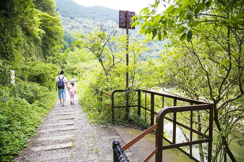 武庫川渓谷廃線ハイキング(生瀬ー武田尾)544