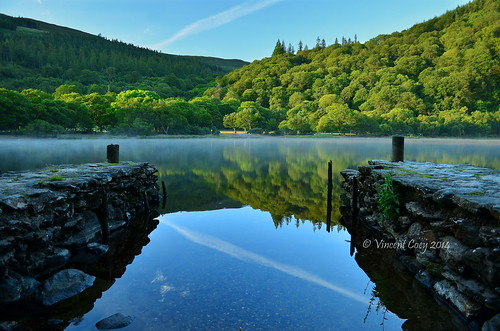 county trees ireland mist lake water sunrise reflections photography jetty vincent glendalough upper wicklow laragh coey