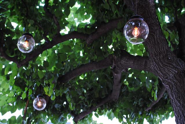Café Lights