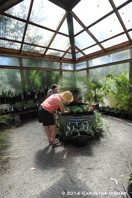 one of many greenhouses
