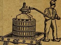 """Image from page 1236 of """"Revue de viticulture : organe de l'agriculture des régions viticoles"""" (1893)"""