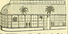 """Image from page 572 of """"The Gardeners' Chronicle and Agricultural Gazette"""" (1850)"""
