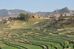 WSF004_201302_HH_Nepal_15