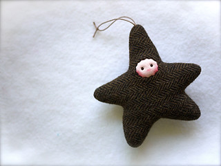 Black Brown Herring STAR: fair