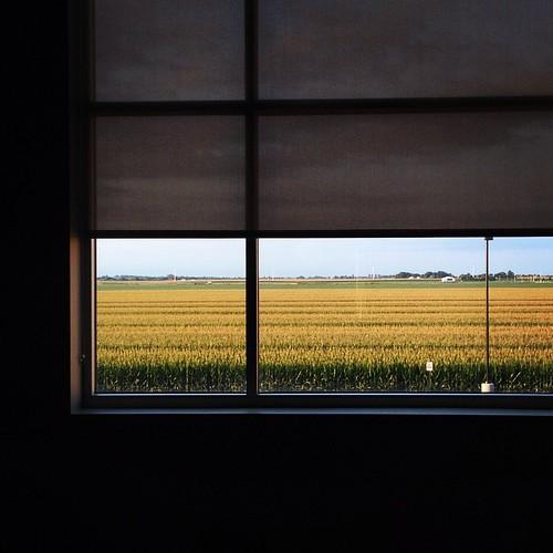 Inner Calm #prairie