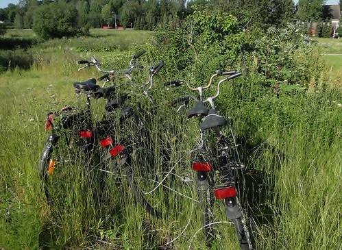 bike landscape bikes maisema polkupyörä hylätytpolkupyörät