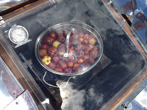 Jujube to Syrup by mikey and wendy