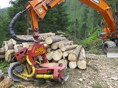 logging, machine, vehicle, construction equipment,