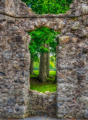 Looks like the trees will eventually win the siege at Huntly Castle. Huntly Castle, Scotland.