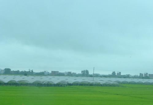 Jiangxi-Wuyuan-Nanchang-bus (25)