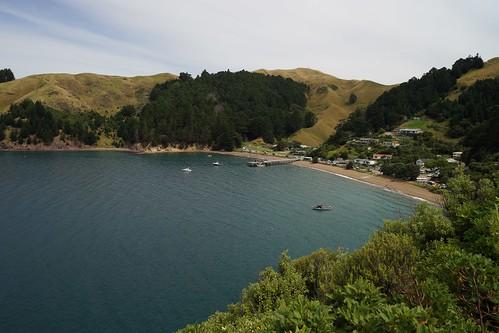 North east south island NZ 21