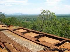 Infinity Pools, Sigirya