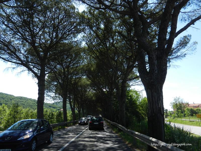 На подъезде к Порторожу