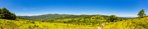 panorama usa landscape geotagged virginia unitedstates hiking backpacking scales hdr appalachiantrail fairwood ptgui photomatix mouthofwilson mountrogersnationalrecreationarea canon7d sigma18250mmf3563dcmacrooshsm geo:lat=3666678785 geo:lon=8148314192