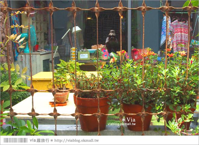 【台中新景點】中興街一巷‧范特喜「綠光計劃」~自來水公司舊眷宿舍的新藝文空間6