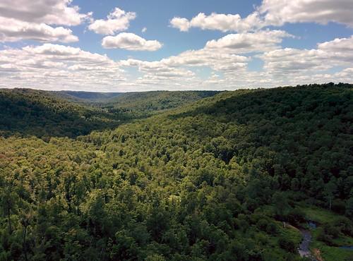 bridge pennsylvania kinzuabridgestatepark mckeancounty