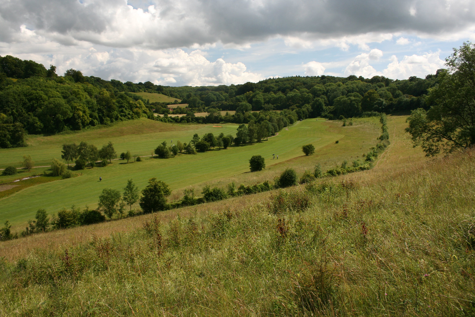 Valley near Shoreham