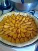 OTH 989 - Tarte aux abricots