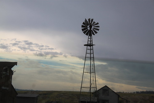 There were windmills everywhere!!!