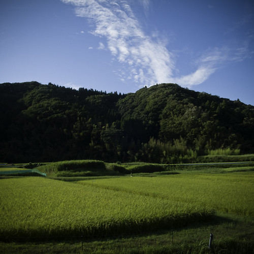 Rice Paddy to the Hills and Sky, Yoroukeikoku, Chiba