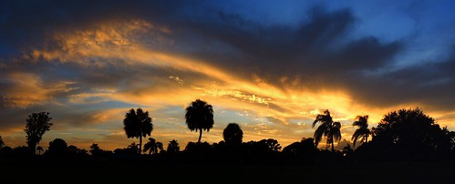 pink blue trees sunset red wallpaper sky panorama orange sun color weather silhouette yellow night palms landscape evening nikon flickr florida dusk coolpix bradenton p510 mullhaupt cloudsstormssunsetssunrises jimmullhaupt