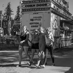 Island County Fair