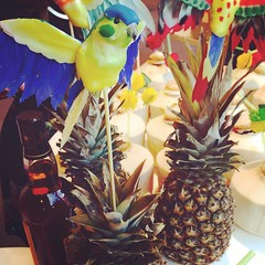 Parrot on a pineapple