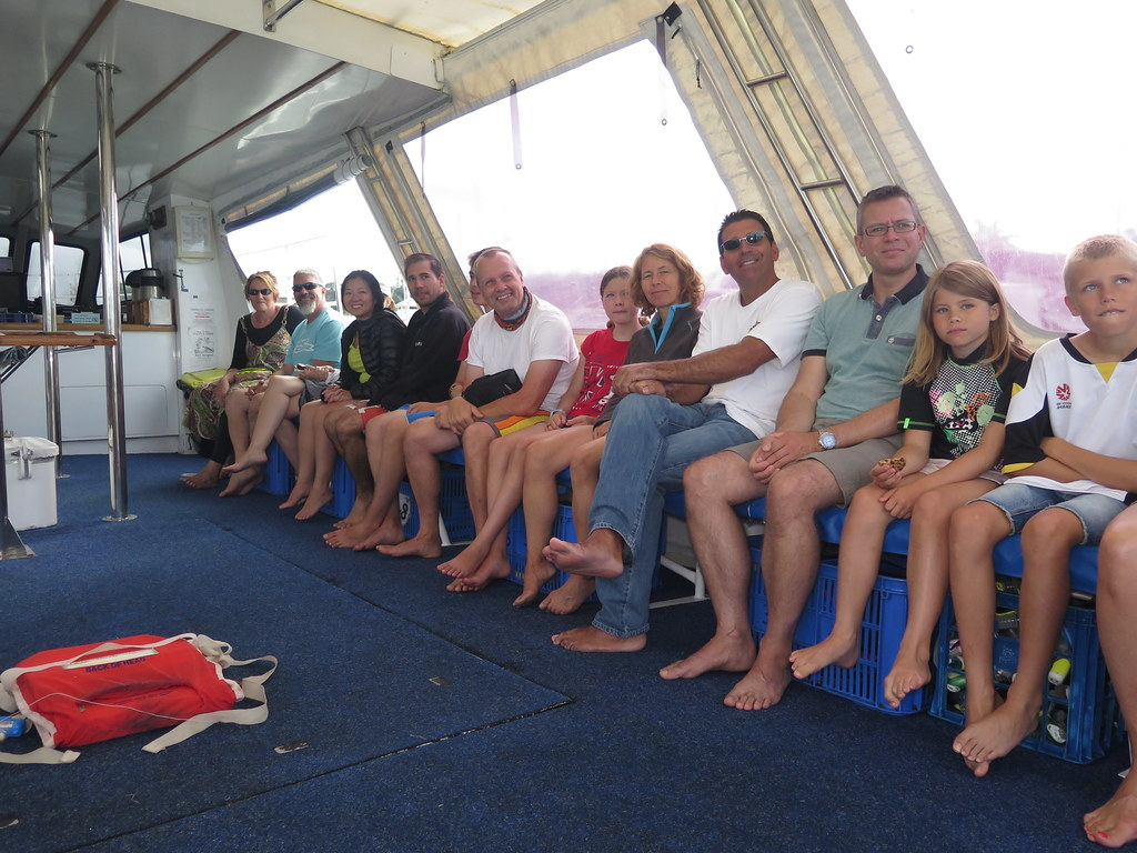 great barrier reef, opal reef, wavelength tours, port douglas, low isles, opal reef