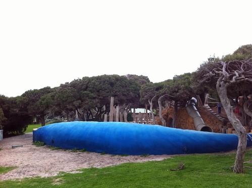 Blue Whale, Playground, Yallingup
